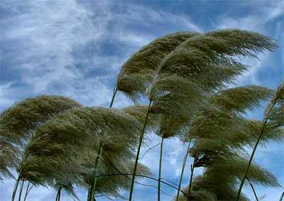 Coğrafiya İnstitutu: Müşahidə edilən hava durumu çox təhlükəlidir