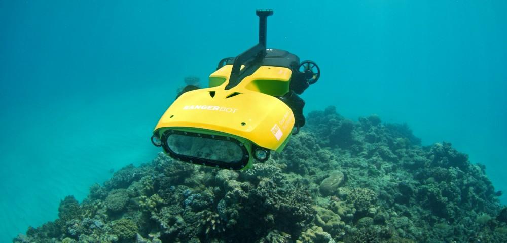 Böyük Sədd Rifini robotlar qoruyacaq
