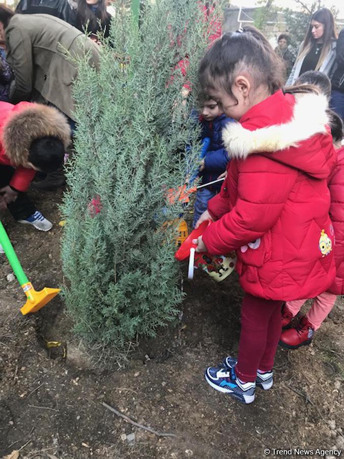 Uşaqlar ağac əkdilər -FOTOLAR