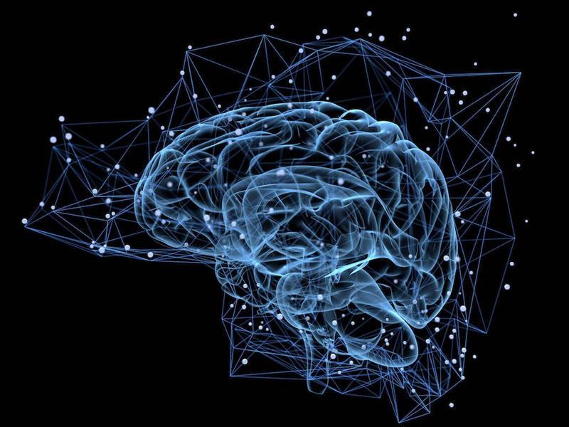 Neuralink layihəsi insan beyni üçün neyrointerfeysin yaradılmasına yaxınlaşıb