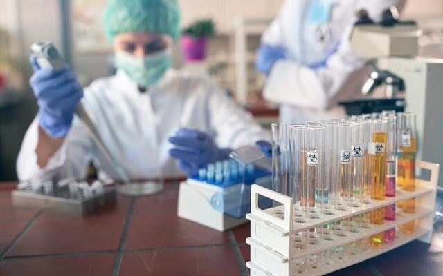 Alimlər yeni növ koronavirusun müxtəlifliyini aşkarladılar