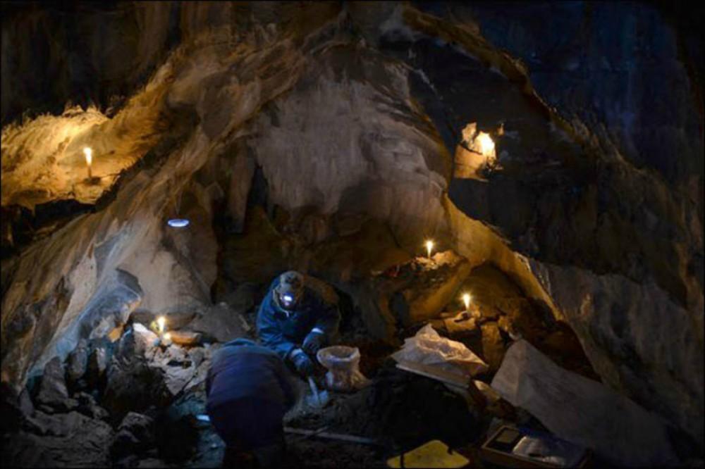 Mağara şirlərinin 13 min illik məzarlığı aşkarlandı