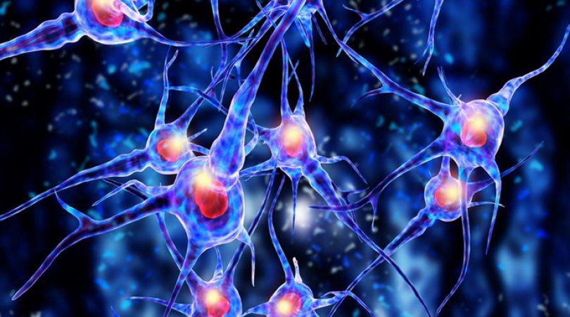 Beyin hüceyrələrini koronavirusdan qorumaq üsulu tapıldı