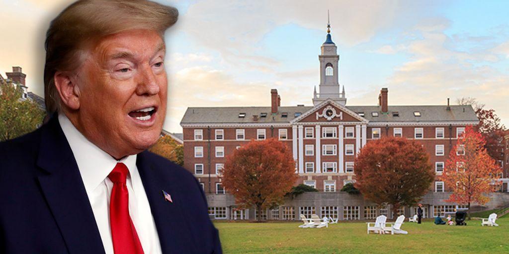 Harvard və MİT universitetləri Tramp hökümətini məhkəməyə verdi