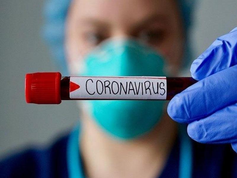 Koronavirusdan qorxmalıyıqmı? - Ən mükəmməl mütəxəssis rəyləri